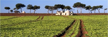 offers spring holidays puglia
